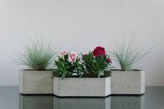 Set of 3: Hexagon concrete planters, Cactus planter, Succulent planter, Flower pot, Concrete pot, Modern planter, Hexagon planter #ConcretePlanterPot #FlowerPots #ConcretePot #ConcretePlanter #planter #SucculentPlanter #IndoorPlanter #ConcretePlanters #ModernPlanter #FlowerPot