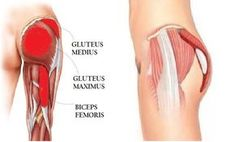 Top 5 Effective Exercises to Build Up Your Glutes.