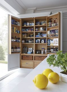 12 stylish and practical pantry ideas for your kitchen 12 Pantry Ideas – Larder Cupboard Ideas For Every Kitchen - Own Kitchen Pantry Kitchen Larder Cupboard, Kitchen Pantry Design, Kitchen Storage, Pantry Storage, Kitchen Cabinets, Pantry Organization, Kitchen Island, Kitchen Cupboard Designs, Larder Cupboard Freestanding