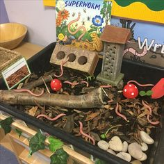 EYFS investigation area - worms - superworm by Julia Donaldson Counting Activities, Spring Activities, Autumn Eyfs Activities, Gruffalo Activities, Book Activities, School Displays, Classroom Displays, Investigation Area, Investigations