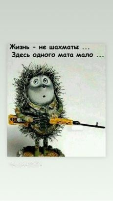 (78) Одноклассники Brainy Quotes, Wise Quotes, Hr Humor, Russian Jokes, Political Posters, Funny Phrases, Funny Quotes About Life, Just Smile, Cursed Child Book