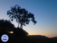 Excursies op Kreta - Zorbas Island apartments in Kokkini Hani, Crete Greece 2020 Greece Holiday, Crete Greece, Beach Holiday, Island, Sunset, Hani, Outdoor, Apartments, Book