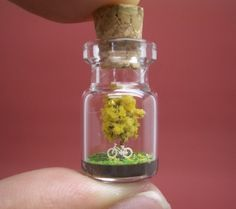 Tiny World in a Bottle – Miniatures from Akinobu Izumi