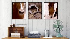 Horse gifts with horse photography set of 3 prints for bedroom wall decor, gift for horse lover to decorate girl room decor