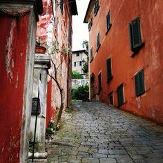Rosso e verde per le strade di Buggiano Castello. Ringraziamo irenospa per questo scatto  #borgoagrumi