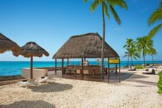 Step Off The Sand And Grab A Drink At Barracuda Dreams Puerto Aventuras Beach