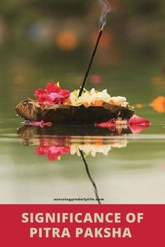 'Pitru' means Ancestors and 'Paksha' means a fortnight. Thus, the sixteen days of the Hindu month of Bhadrapada is Pitru Paksha. Know more about the significance of Pitra Paksha.