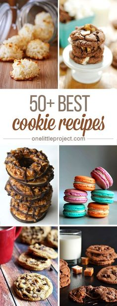 50+ Best Cookie Recipes - OMG I'm drooling! From classic chocolate chip cookies to coconut macaroons this list has you covered, no matter what your sweet tooth is craving!