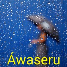 Rain | Áwaseru ta kai - It's raining! Visit: http://henkyspapiamento.com #new #papiamentu #papiaments #papiamento #aruba #bonaire #curacao #curaçao #instalike #like #caribbean #language #islandlife #island #beach #sun #tropical #exotisch #summer #words #wordoftheday #word #phrases #phrase #learning #papiamentowords #papiamentophrases