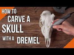 In this Dremel skull carving video, we are taking a break from wood carving/power carving. Learn the basics of power carving in this deer skull carving with . Deer Skull Art, Cow Skull Decor, Deer Antler Crafts, Antler Art, Antler Jewelry, Dremel Carving, Carving Tools, Crane, Dremel Tool Projects