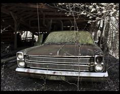 Dead Ford by Chris Smart