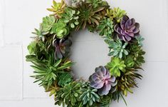 How To Make A Succulent Wreath  http://www.rodalesorganiclife.com/home/how-to-make-a-succulent-wreath?utm_source=facebook.com