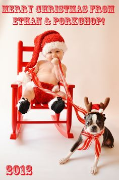 Santa baby and dog reindeer photo shoot