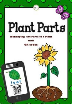 Very simple and basic 4 plant parts: roots, stem, leaf, and flower. This is a great set of flashcards for your unit of Plants. Use QR reader to identify the parts of a plant - sunflower.  This file includes:- page #1 - title page;- page #2 - poster with unlabeled sunflower parts;- page #3 - poster with labeled sunflower parts;- page #4 - flashcards (1/4 size) with the short description of each part;- page #5 - unlabeled flashcards (1/4 size) with QR codes for each plant part;- page #6…