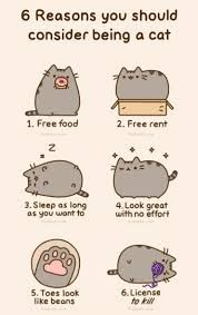 Image result for pusheen marshmallow
