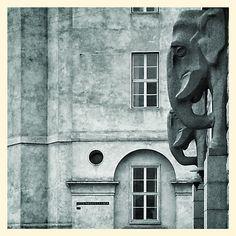 Politigården og Elefanthuset