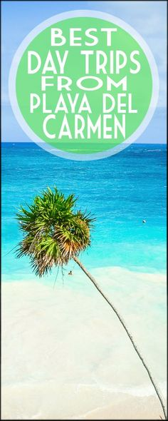 day trips from playa del carmen mexico