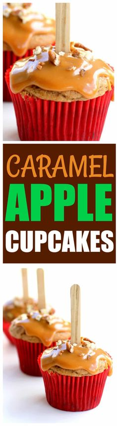 These Caramel Apple Cupcakes are simple and easy. This recipe has all of the fall flavors you love and the cupcakes are drizzled with caramel and nuts. They look like a caramel apple in cupcake form. the-girl-who-ate-everything.com