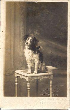 Photo postcard, Endrey Studio, Paris, France, circa 1915
