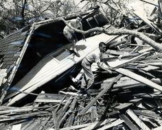 hurricane camille research paper Research paper writing guide theology term paper sample why is it risky to buy a cheap paper writing a paper on ptsd & suicide hurricane katrina: sample paper dissertation editing fees choosing expository paper topics writing a thesis methods section.