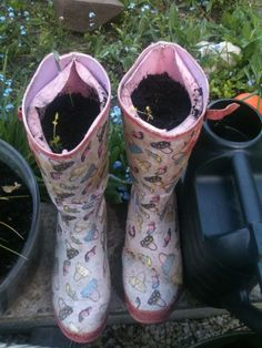 Grow carrots in your old wellies. Why not?