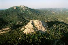 Το δάσος Δαδιάς χαρακτηρίζεται ως εθνικό πάρκο.
