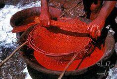 ceramica indigena - Pesquisa Google
