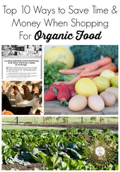 Top 10 Ways to Save Time and Money When Shopping for Organic Food // This House of Joy