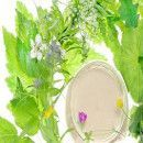 Cosmética natural: 11 mascarillas y remedios con plantas terapéuticas