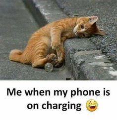 The post Me When My Phone Is On Charging appeared first on Gag Bee.