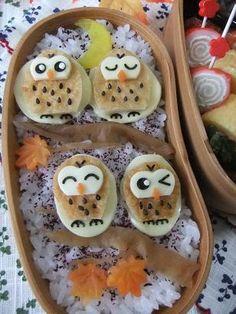 owls bento