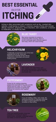 Fantastic Essential Oil Patchouli Tips And Strategies For Patchouli Essential Oil benefits Essential Oils For Rash, Blue Tansy Essential Oil, Essential Oils For Psoriasis, Patchouli Essential Oil, Doterra Essential Oils, Essential Oil Diffuser, Essential Oil Blends, Peppermint Essential Oils, Helichrysum Essential Oil Uses