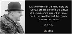 quote-it-is-well-to-remember-that-there-are-five-reasons-for-drinking-the-arrival-of-a-friend-w-c-fields-138-44-49.jpg (850×400)