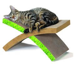 Petstages 710 Invironment Easy Life Hammock Scratcher Cat Scratcher and Rest -- Be sure to check out this awesome product. (This is an affiliate link and I receive a commission for the sales)