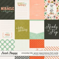 Everyday Life: Great Expectations 3x4 Cards by Megan Turnidge & Tickled Pink Studio