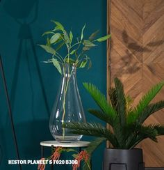 Histor Planeet bij #Trendhopper #trend #groen Glass Vase, Google, Room, Home Decor, Bedroom, Decoration Home, Room Decor, Rooms, Home Interior Design