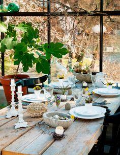 Påskdukning i växthuset / Easter dinner in the green house
