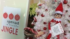 Studio 5 - Spreading Jingle Spirit-This Mom is doing it RIGHT!!