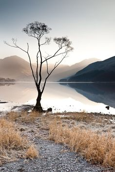 So tranquil such a beautiful shot of nature. Cumbria, Lake District, Gris Taupe, Cool Photos, Amazing Photos, Over The Hill, English Countryside, Winter Scenes, Beautiful Landscapes