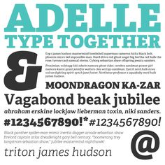 7th most popular web font of 2012, Adelle from TypeTogether - http://www.webink.com/font/adelle