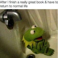 I get you, Kermit. Memes Fr, Stupid Funny Memes, Funny Relatable Memes, Haha Funny, Funny Posts, Funny Quotes, Funny Stuff, Life Memes, Funny Kermit Memes