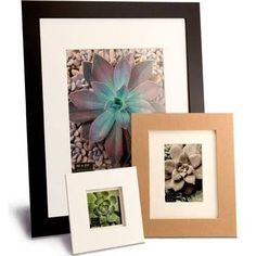 "Framatic Metro Picture Frame Color: White, Size: 18"" x 24"" Frame/13"" x 19"" Mat"