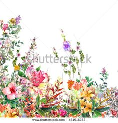Abstract flowers watercolor painting. Spring multicolored flowers on white background