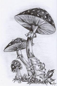 Mushrooms by nerissa-the-vampire.deviantart.com on @deviantART