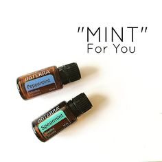 "Let me introduce you to this precious duo: Perky Peppermint and Stand-up Spearmint. One of these oils is ""Mint"" for you. 🍃Perky Peppermint is the kind of oil you need when you need a good afternoon pick-me-up. He's outgoing and lively - he's good for a fun night on the town. He'll help you survive fiery 🌶 dinners and even help you the next morning after the party (after you've had one too many). He's a perfect match for those with a mellow spirit - because, well, opposites attract…"