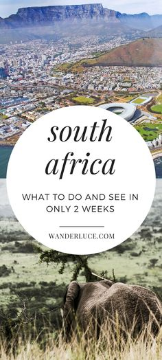 In this travel guide, check out how we spent 2 weeks in South Africa! All the wonderful things to do, see, and eat as well as the best travel tips!