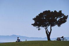 """Study Hall"" Santa Barbara City College (SBCC) style"