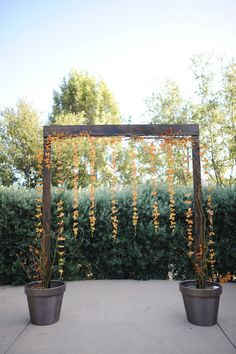 Maybe have arbor come out of half barrels instead of full. have curl willow and flowers in halves as well
