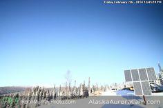 Alaska Aurora Cam