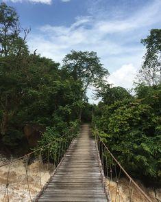 Don Det, Si Phan Don  #treasuresoflaos #DonDet #SiPhanDon    📌 Don Det - Laos #dondet #champasak #waterfalls #amazinglaos #laos #laostyle #donkong #dondetisland #lao Phan, Waterfalls, Railroad Tracks, Laos, Amazing, Instagram, Waterfall, Falling Waters, Train Tracks